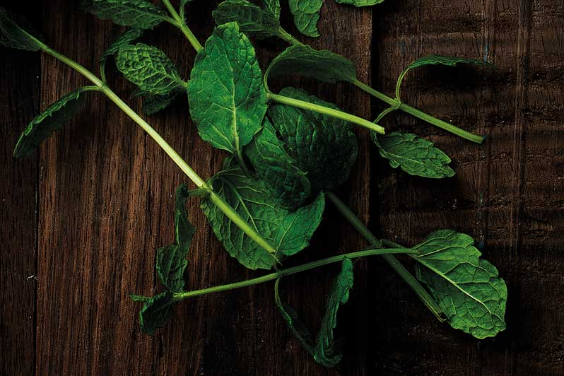 Fresh mint on a wooden board.