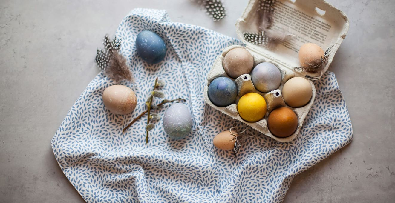 Coloured eggs in an egg carton