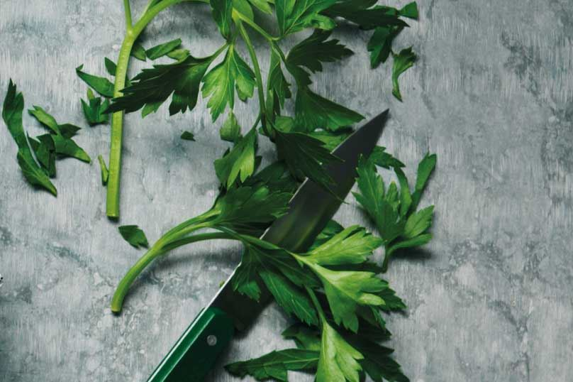 Fresh parsley and a small knife